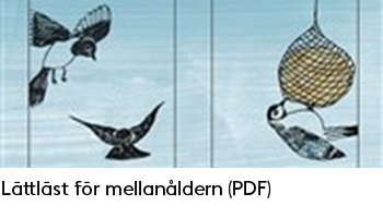 Länk till PDF-dokument med tips på lättlästa böcker för mellanåldern.